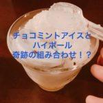 チョコミントアイスハイボールを作って飲んでみた結果・・・【味の感想】